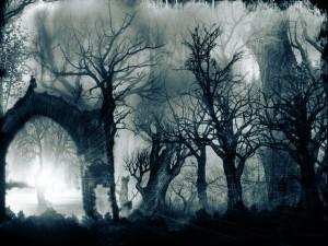 bosque_tenebroso-300x225