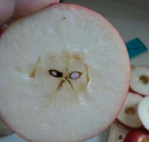 pareidolia manzana