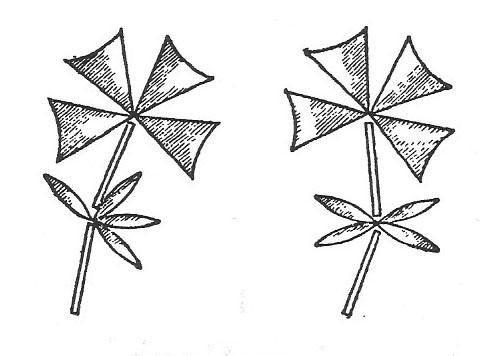 flores-redondas